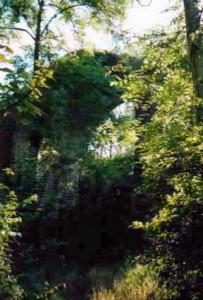 ligne aulnay rivecourt viaduc